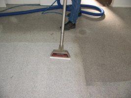 Você realmente entende como limpar tapetes?